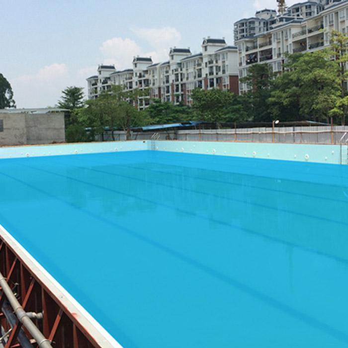 Degaulle Galvanized Steel Inground Swimming Pool
